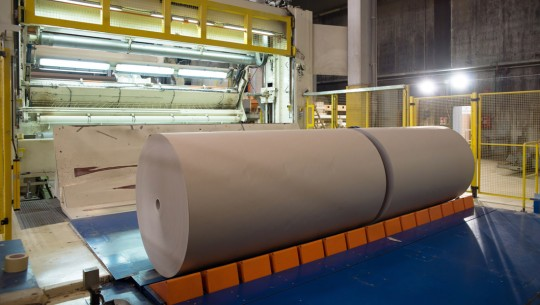 Paper and Pulp Industry
